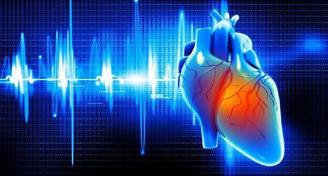 رسیدگی فوری در ایست قلبی مهم ترین عامل نجات جان بیمار است
