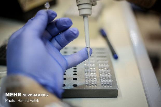 ایجاد 6 شتاب دهنده در حوزه زیست فناوری پزشکی