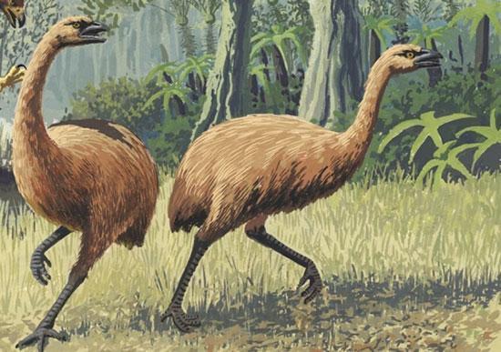 چه حیواناتی در گرداب انقراض افتادند؟