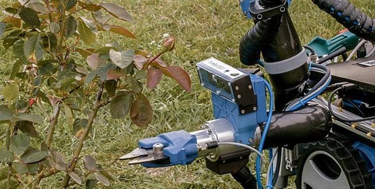 رباتی که باغ را هرس می نماید