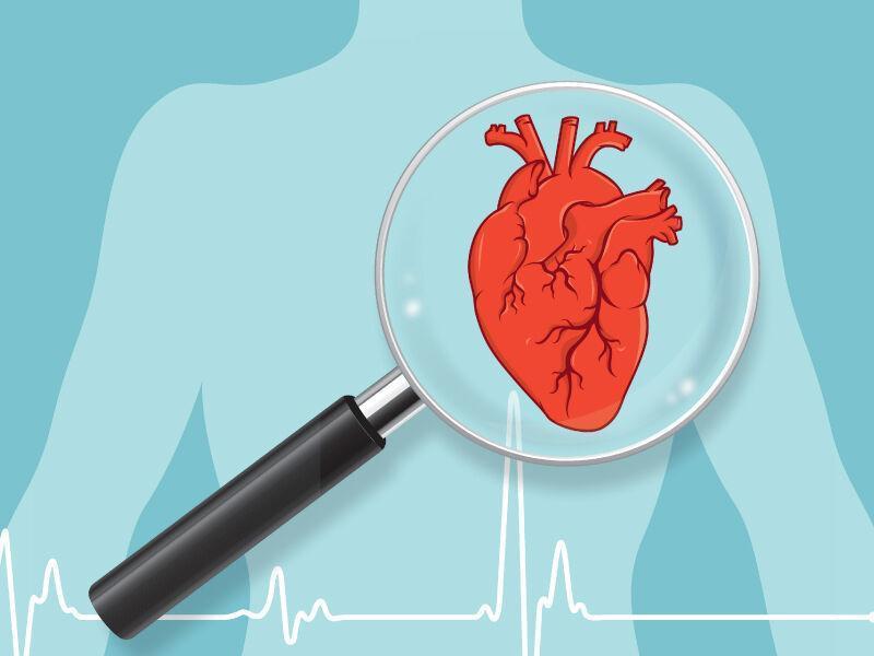 نوعی باکتری روده برای غربالگری هوشمند بیماری قلبی میکروبیوم روده؛ دورنمایی جهانی باکتری های روده با بیماری های قلبی ارتباط دارد نحوه تعامل ویروس ها و باکتری ها در میکروبیوم روده