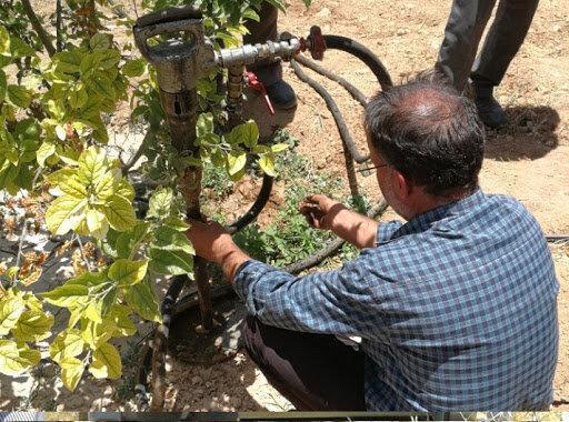 کوددهی درختان به روش تزریق در خاک
