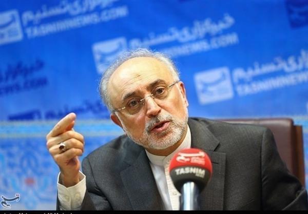 توافق ایران و آژانس محرمانه است، به قطعنامه احتمالی شورای حکام واکنش مناسب خواهیم داشت