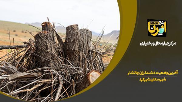 خبرنگاران فیلم: آخرین شرایط دشت ارژن چالشتر شهرستان شهرکرد